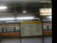 P6143952_1.jpg