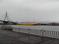 P9115605_1.jpg